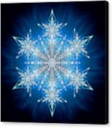 Snowflake - 2012 - A Canvas Print by Richard Barnes