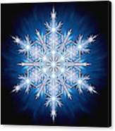 Snowflake - 2013 - A Canvas Print by Richard Barnes