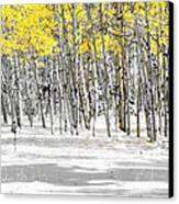Snowy Aspen Landscape Canvas Print by The Forests Edge Photography - Diane Sandoval