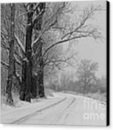 Snowy Country Road - Black And White Canvas Print