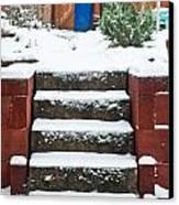 Snowy Garden Canvas Print by Tom Gowanlock