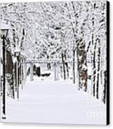 Snowy Lane In Winter Park Canvas Print by Elena Elisseeva