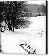 Snowy Stream Canvas Print by Alexandra  Rampolla