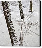 Snowy Trees In Frozen Pond - Winter Forest Canvas Print by Matthias Hauser