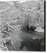 Snowy Wissahickon Creek Canvas Print by Bill Cannon