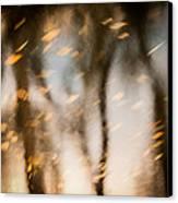 Soft Autumn Canvas Print