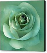 Soft Emerald Green Rose Flower Canvas Print by Jennie Marie Schell