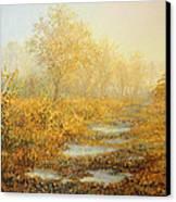 Soft Warmth Canvas Print by Kiril Stanchev
