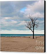 Solitude Canvas Print by Dipali S