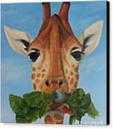 Someone Is Eating My Garden Canvas Print by Pam Fries