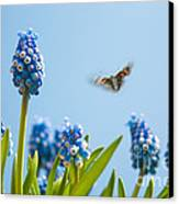 Something In The Air Canvas Print by John Edwards