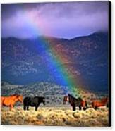 Somewhere Over The Rainbow Canvas Print by Jeanne  Bencich-Nations