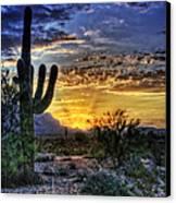 Sonoran Sunrise  Canvas Print by Saija  Lehtonen