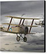 Sopwith Triplane Canvas Print by Pat Speirs