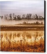 Sounds Of Silence Canvas Print by Tom Druin