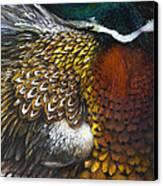 South Dakota Plumes Canvas Print by Lynette Yencho
