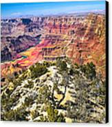 South Rim From The Butte Canvas Print by Robert Bales