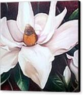 Southern Beauty Canvas Print
