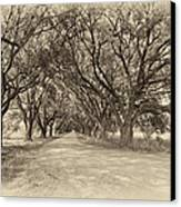Southern Journey Sepia Canvas Print