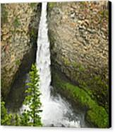 Spahats Falls Waterfall In Wells Gray Provincial Park Canvas Print