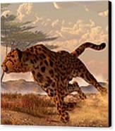 Speeding Cheetah Canvas Print by Daniel Eskridge