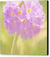 Sphere Florale - 01tt01a Canvas Print by Variance Collections