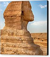 Sphinx Profile Canvas Print by Jane Rix