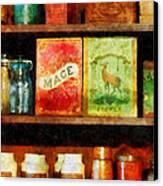 Spices On Shelf Canvas Print by Susan Savad