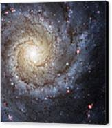 Spiral Galaxy M74 Canvas Print