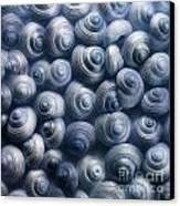 Spirals Blue Canvas Print