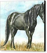 Spirit Wild Horse In Sanctuary Canvas Print by Linda L Martin