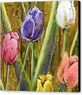 Splashy Tulips II With Gold Leaf By Vic Mastis Canvas Print