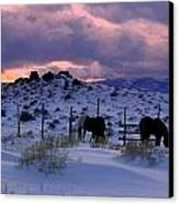 Splendor Of Winter  Canvas Print by Jeanne  Bencich-Nations