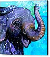 Splish Splash Canvas Print by Debi Starr