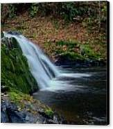 Split Falls Canvas Print
