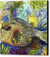 Spotted Trunkfish Canvas Print by Carol Wisniewski