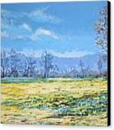 Spring Canvas Print by Andrei Attila Mezei