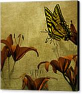 Spring Fever Canvas Print by Diane Schuster