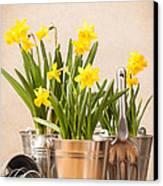 Spring Planting Canvas Print by Amanda Elwell
