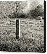 Spring Post And Bale In Black N White Canvas Print by Tracy Salava