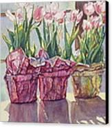Spring Shadows Canvas Print by Jan Landini