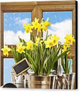 Spring Window Canvas Print by Amanda And Christopher Elwell