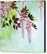 Spring Wisteria Canvas Print by Bedros Awak
