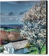 Springtime In The Blue Ridge Mountains I Canvas Print by Dan Carmichael