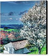 Springtime In The Blue Ridge Mountains II Canvas Print by Dan Carmichael