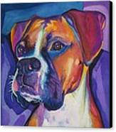 Square Boxer Portrait Canvas Print by Robyn Saunders