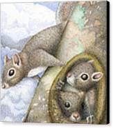 Squirrels Canvas Print by Wayne Hardee