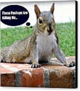 Squirrely Push Ups Canvas Print by Karen Wiles