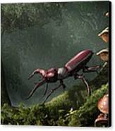 Stag Beetle Canvas Print by Daniel Eskridge