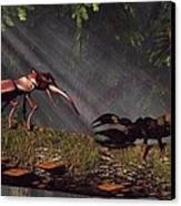 Stag Beetle Versus Scorpion Canvas Print